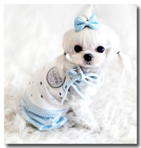 Pyjama Jogginganzug *  Sweet DOGGY * blue
