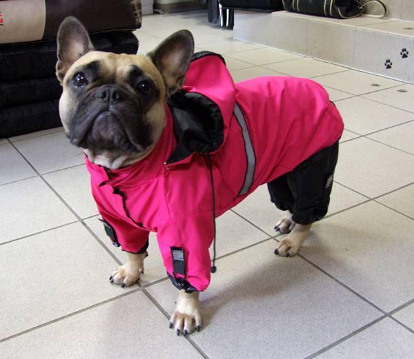 Hunde Regenanzug und Jacke 2 in 1 *MINI PINK PANTHER *
