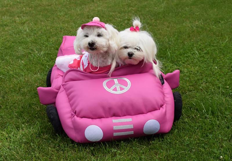 auto bett cabrio f r hunde pink. Black Bedroom Furniture Sets. Home Design Ideas