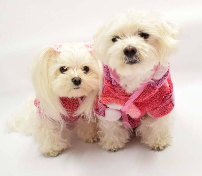 76bba51fa6806c Doppelseitiger Bademantel für Hunde LEONIE