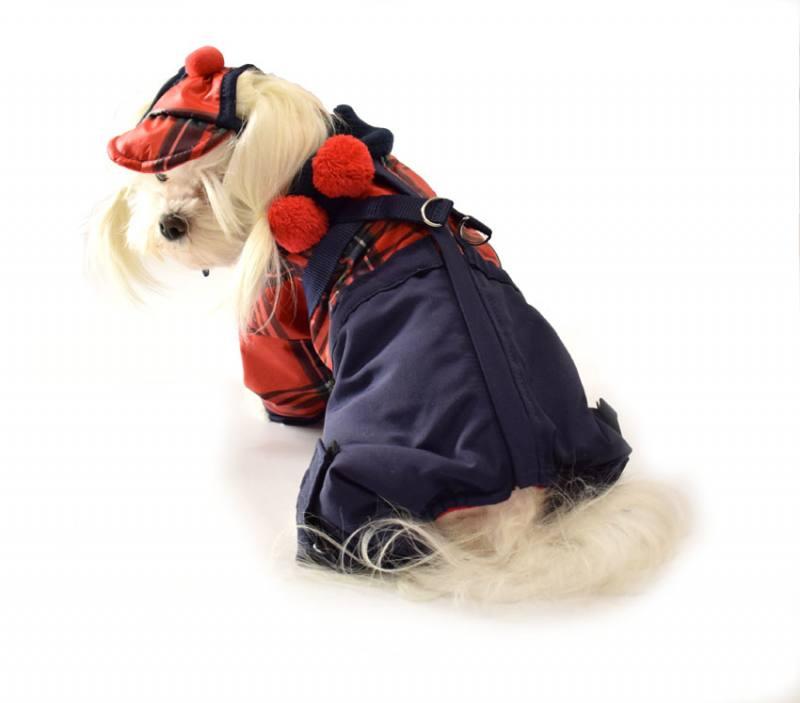 Winteranzug Hunde Wintermantel D Ring SkimantelwatsonMit 8P0nwXOk